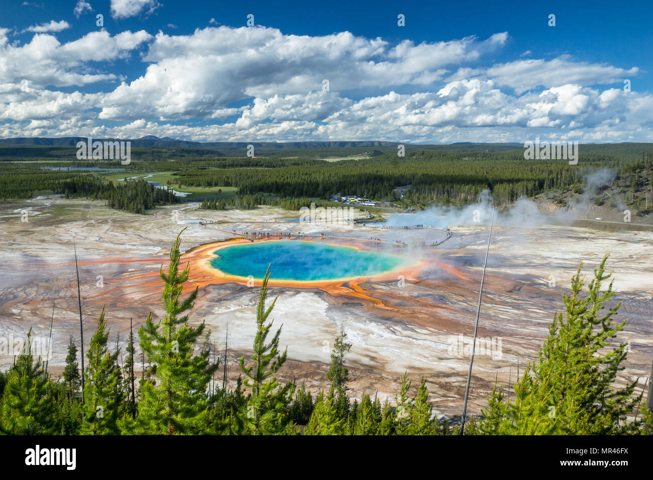 Grand Prismatic Spring on a wonderful summer evening in full color. Just an absolutly amazing place and one of the Natual Wonders of our Planet Stock Photo