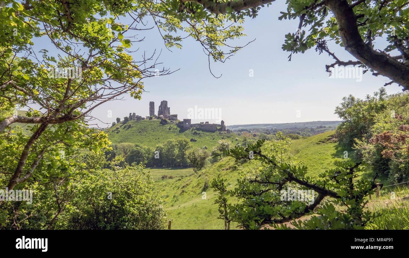 Corfe Castle in Dorset uk - Stock Image