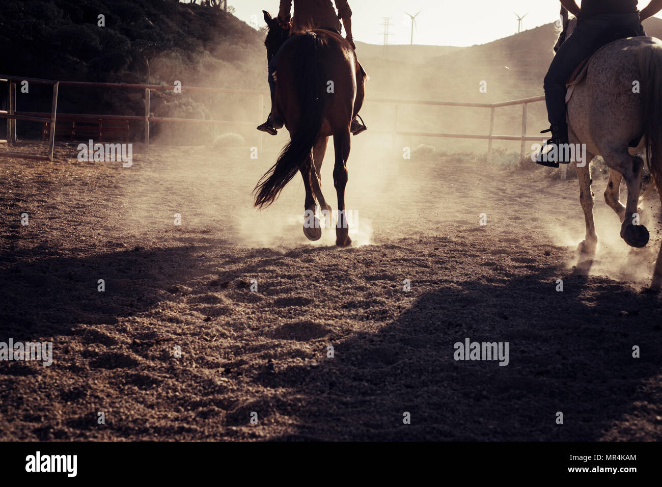 two horses run and ride in the backlight making dust on the ground. sunny day and wind mill on the background for emotional pictures. countryside plac - Stock Image