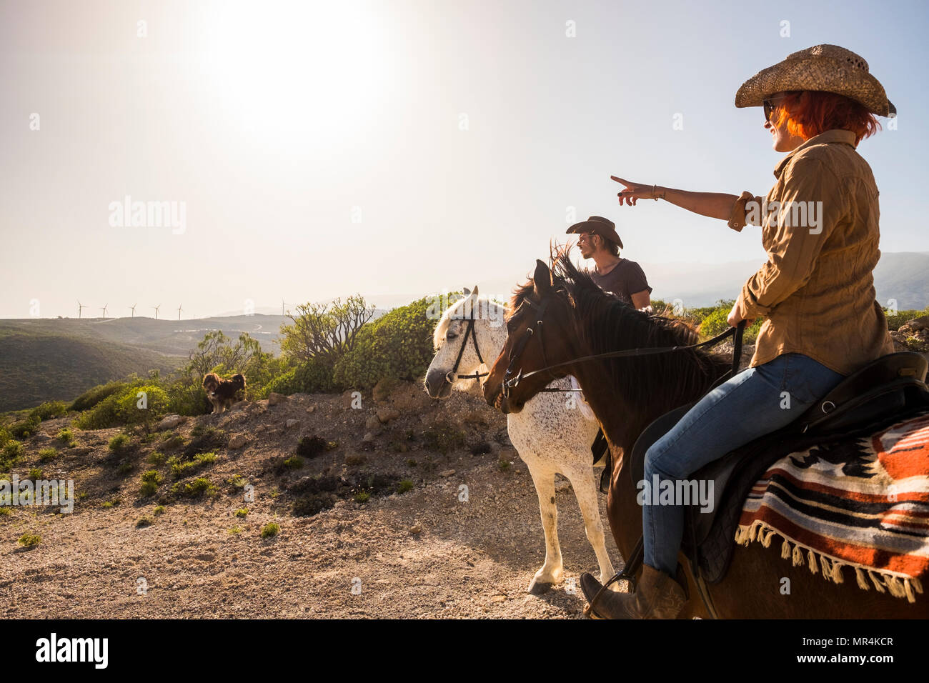 couple in vacation in tenerife ride horses in the nature. wind mill on the background and sunny colored day. dog and animals outdoor leisure activity  - Stock Image