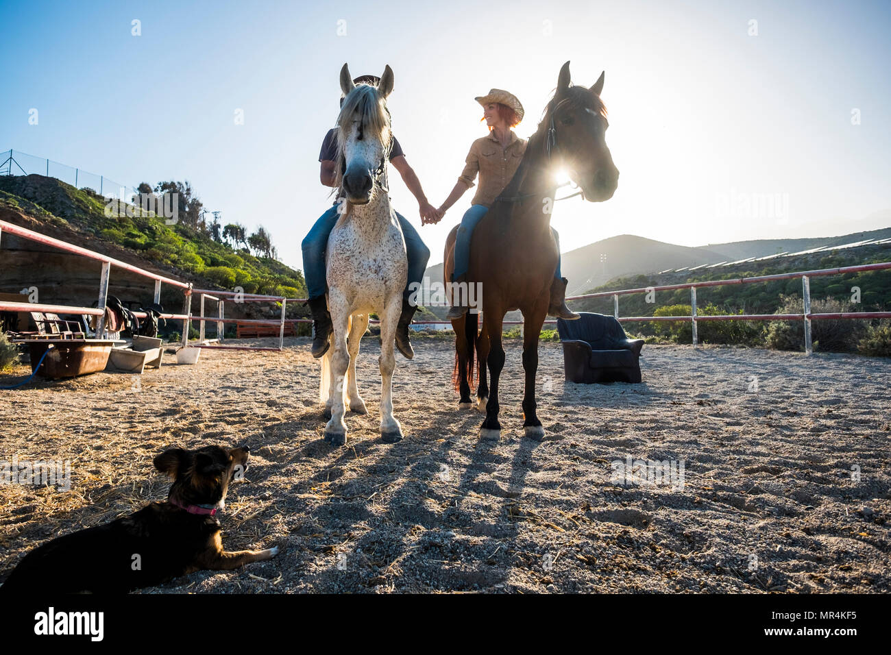 beautiful caucasian couple on two horses with the sun in backlight and a dog looking them from the ground. touching hands and beautiful animals for lo - Stock Image