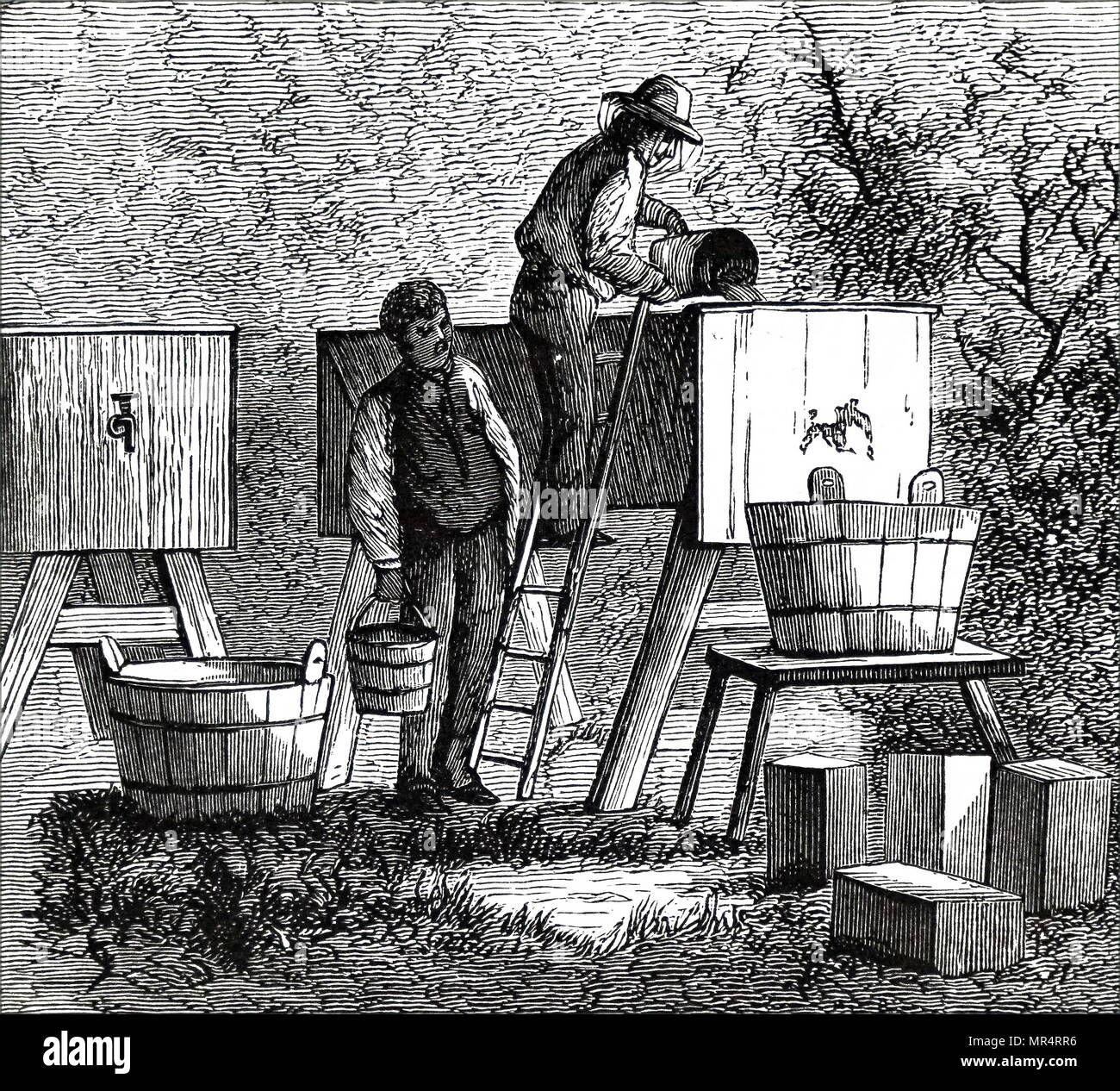 Engraving depicting a beekeeper clearing honey by straining it into settling tanks and then drawing off by tap after leaving it to stand for a number of hours. Dated 19th century - Stock Image