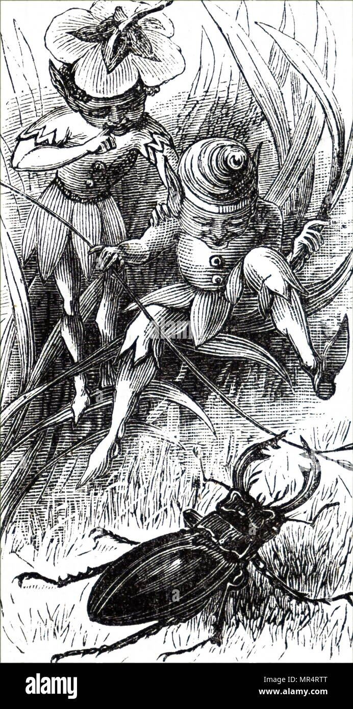 Engraving depicting fairies and a stag beetle. Dated 19th century - Stock Image