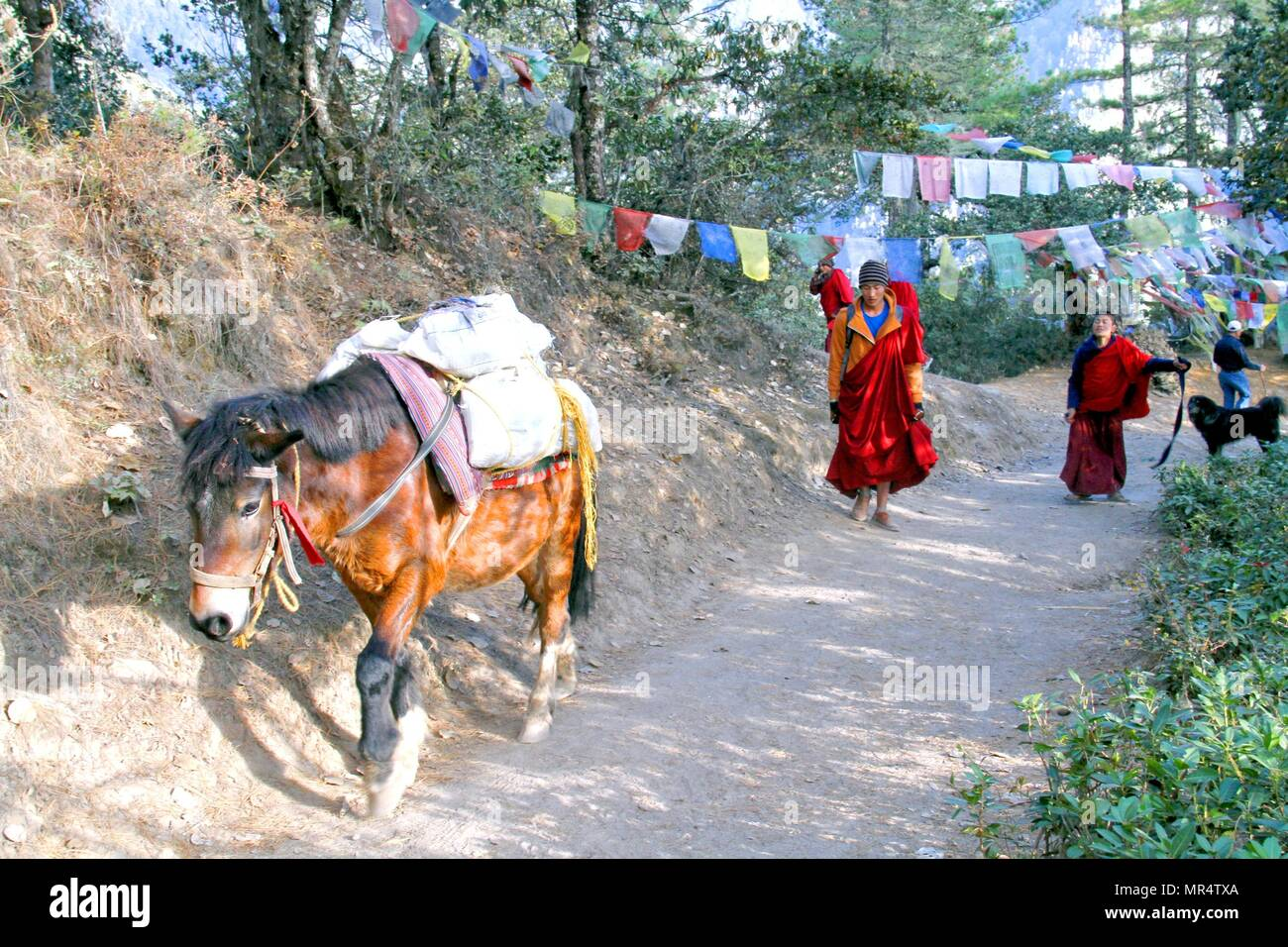 PARO, BHUTAN - November 09, 2012 : Horse carrying goods and two young monks at trail to Taktshang Goemba or Tiger's nest monastery, Paro, Bhutan - Stock Image