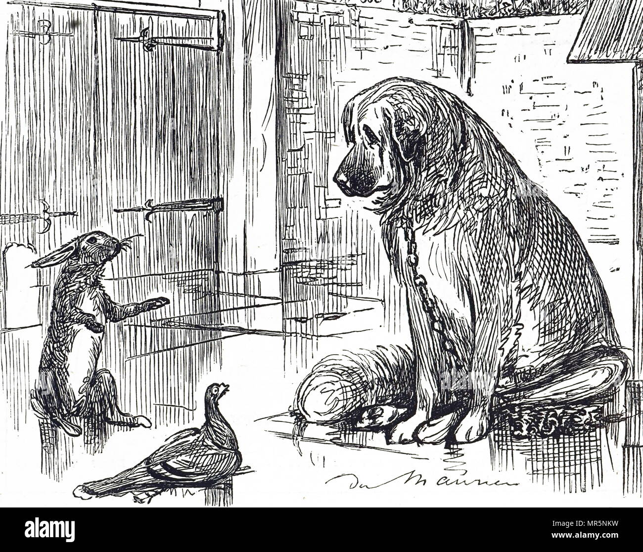 Cartoon commenting on the Cruelty to Animals Act 1876 - a plea for the rest of the animal kingdom to be given as much consideration as the animals used  in vivisection experiments. Illustrated by George du Maurier (1834-1896) a Franco-British cartoonist and author. Dated 19th century - Stock Image