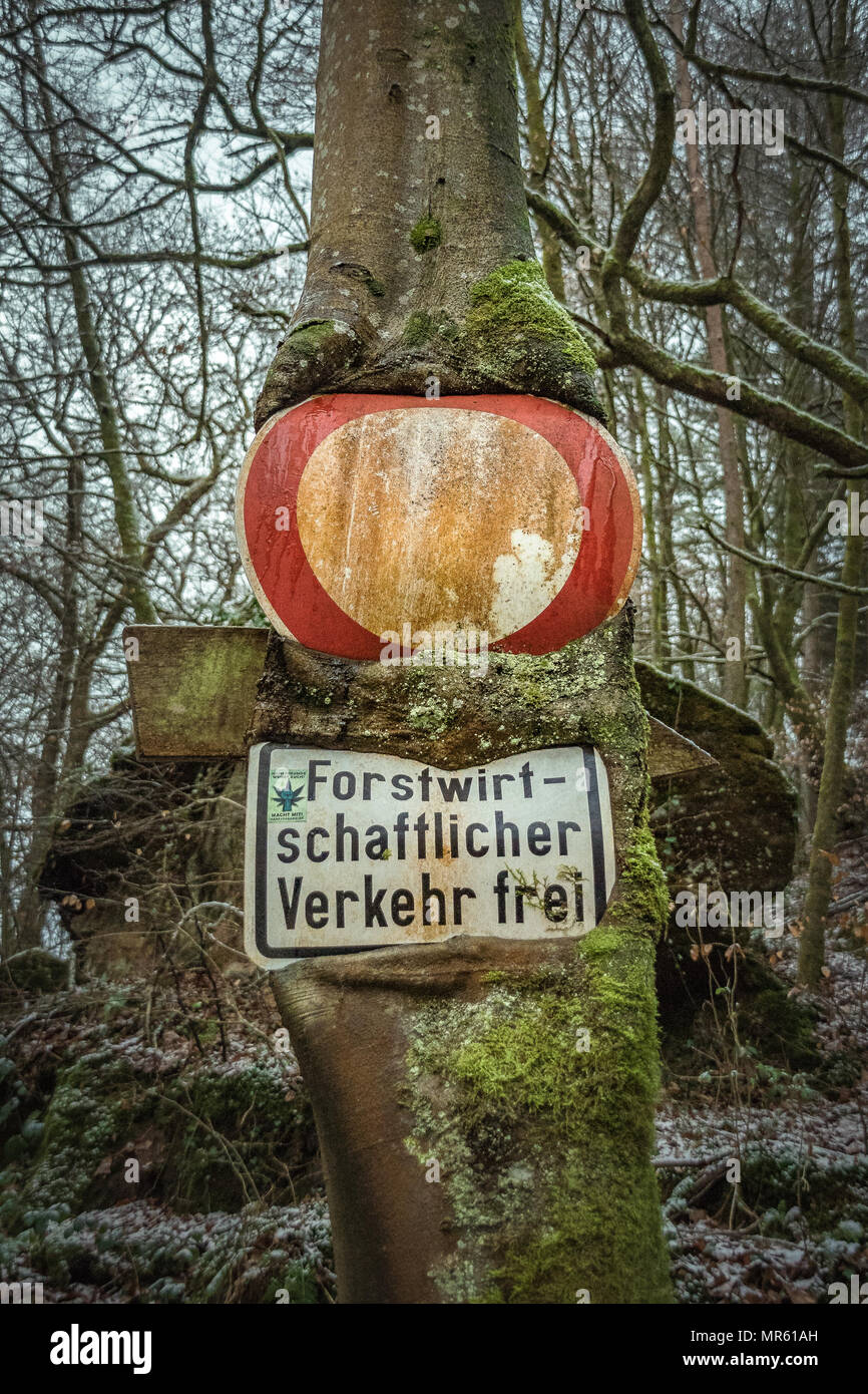 Sign in Forest - Stock Image