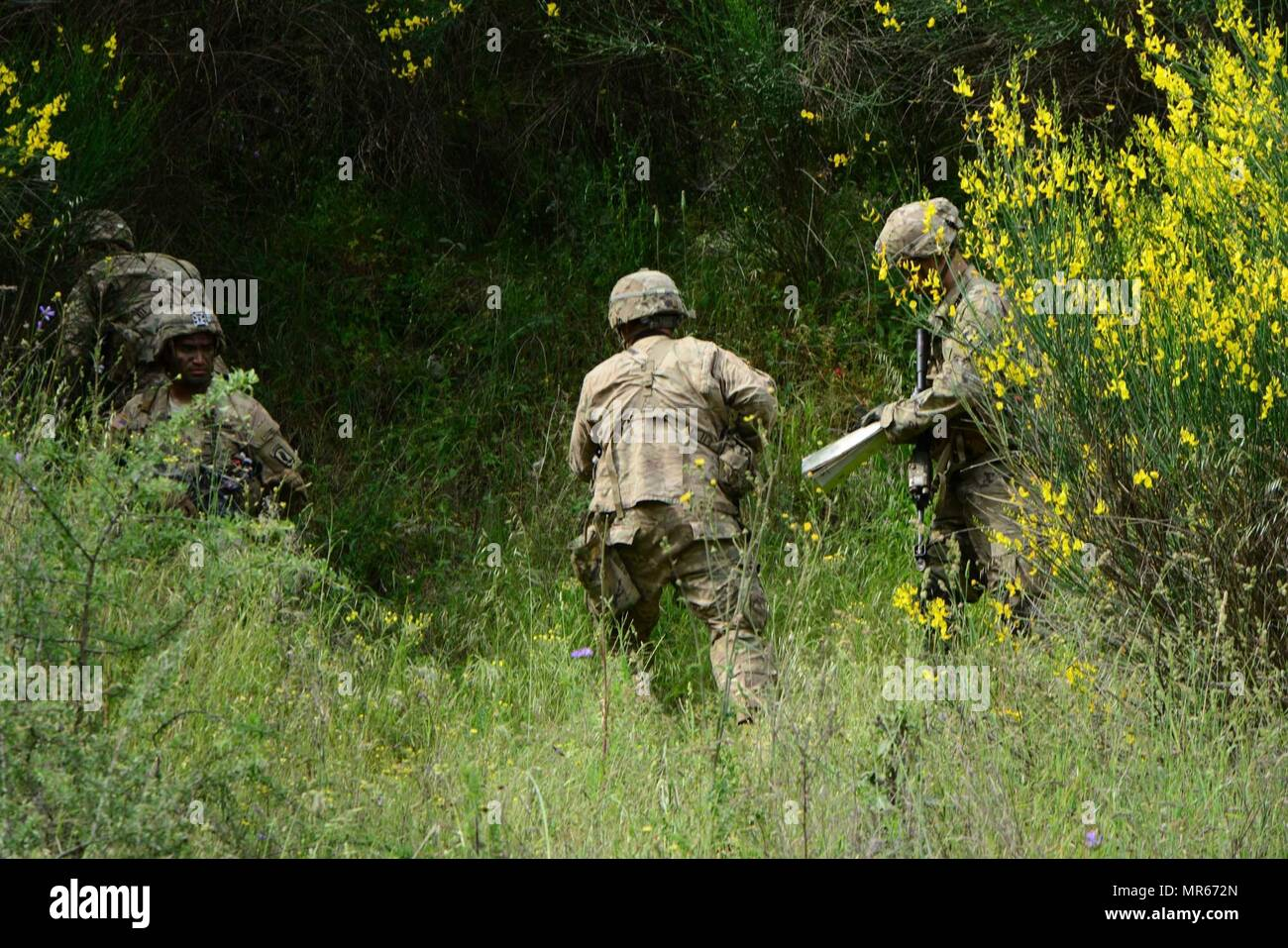 U.S. paratroopers assigned to 1st Battalion, 503rd Infantry Regiment, 173rd Airborne Brigade, are conducting ambush training with 1st Paratrooper Commando Brigade of the Greek Army at Camp Redina, Greece, during the Exercise Bayonet Minotaur, 18 May 2017. Bayonet Minotaur is a bilateral training exercise between U.S. Soldiers assigned to 173rd Airborne Brigade and the Greek Armed Forces, focused on enhancing NATO operational standards and developing individual technical skills. The 173rd Airborne Brigade is the U.S. Army's Contingency Response Force in Europe, providing rapidly-deploying force - Stock Image