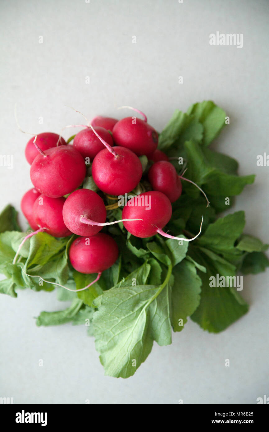 Heap of fresh radishes with tops and leaves on wooden rustic background - Stock Image