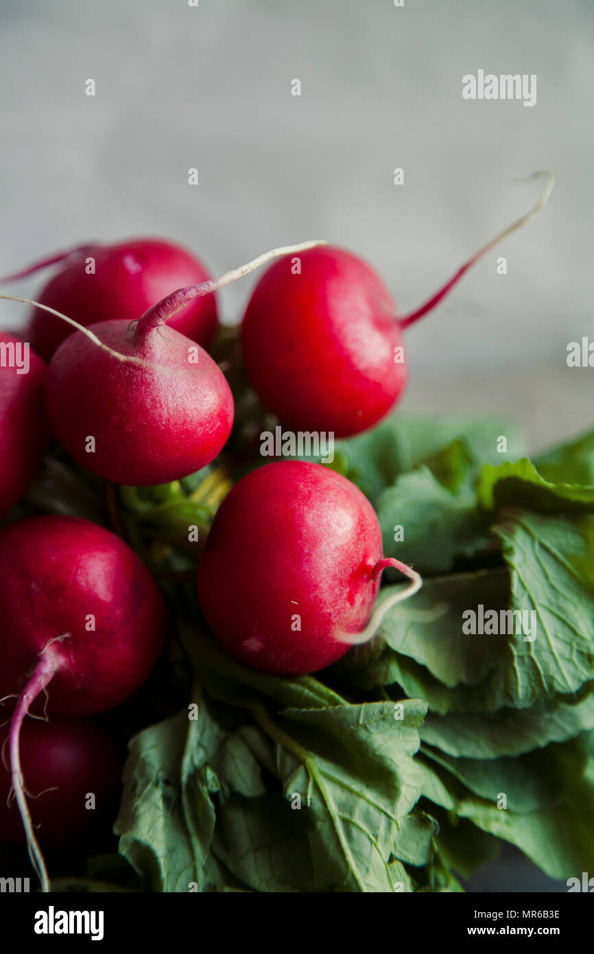 Close up image of heap of fresh radishes with tops and leaves on wooden rustic background - Stock Image