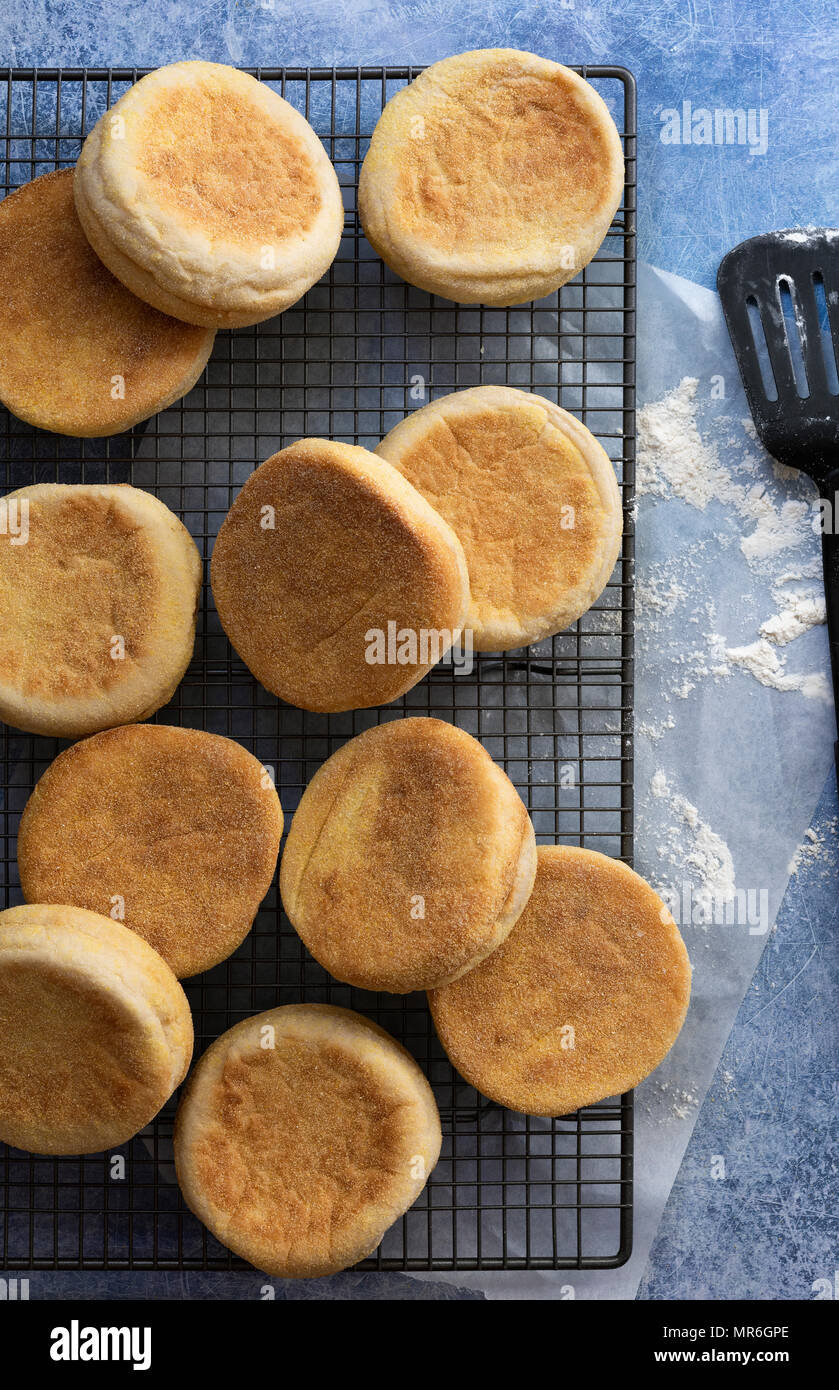 English muffins cooling on a wire rack from a top view. - Stock Image
