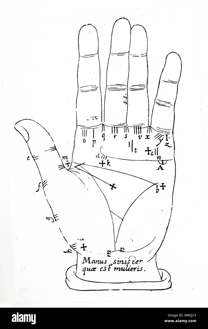 Illustration showing the general lines of the left hand of a female. The lines are created by the movement of the hand and joints. Dated between 1617-1619 - Stock Image