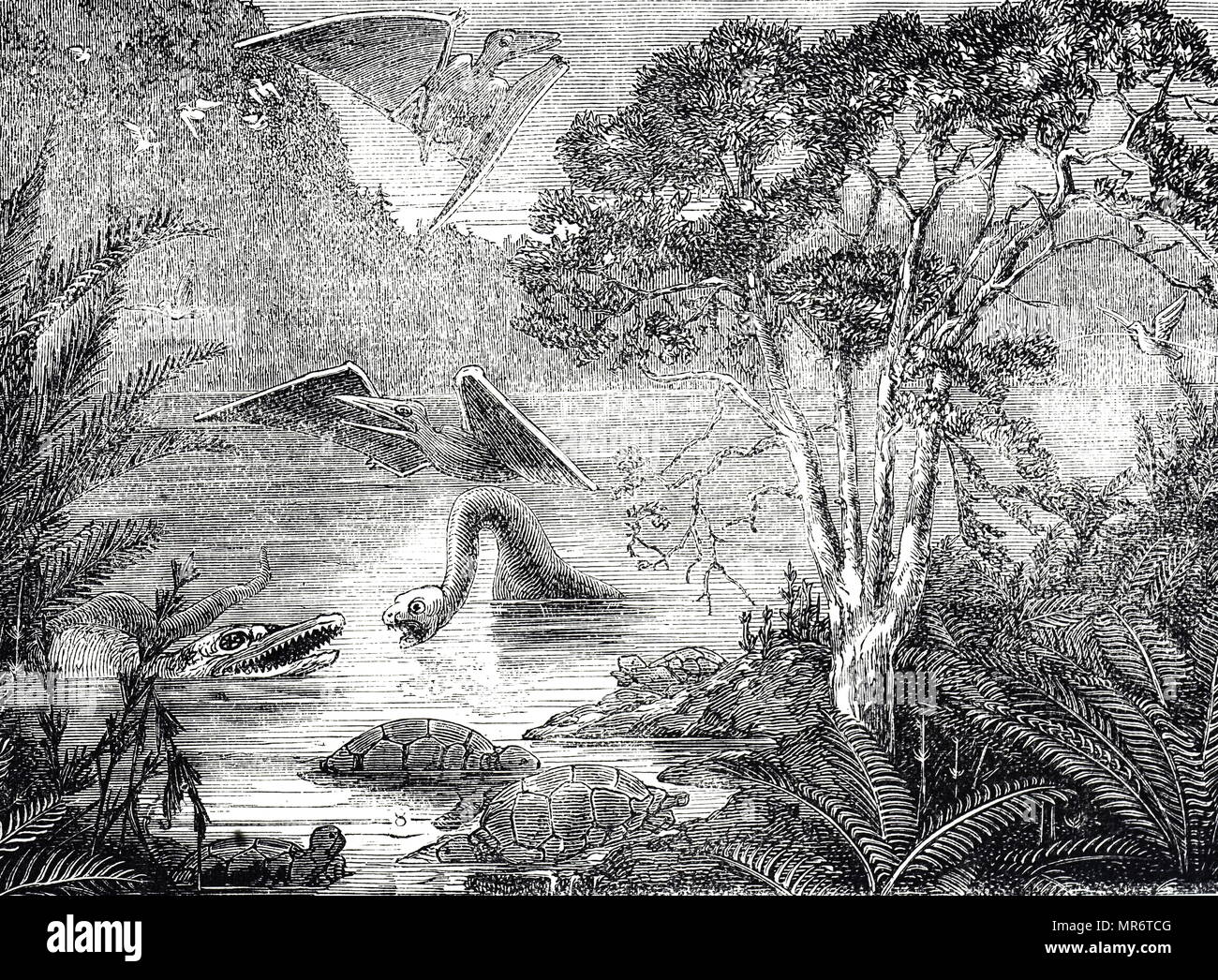 Engraving depicting the ideal Flora and Fauna of the Upper Cretaceous period. Dated 19th century - Stock Image