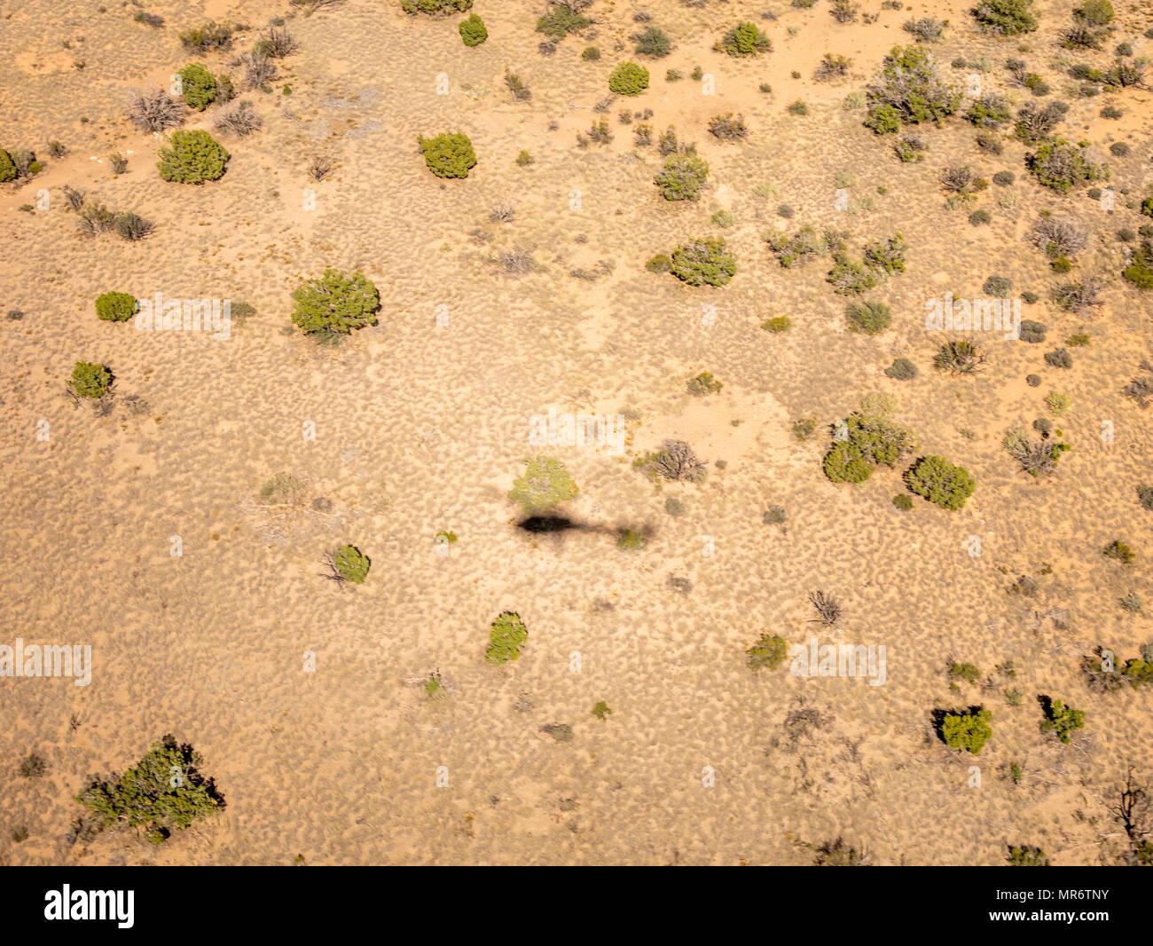 Helicoper shadow on the Nevada Desert - Stock Image