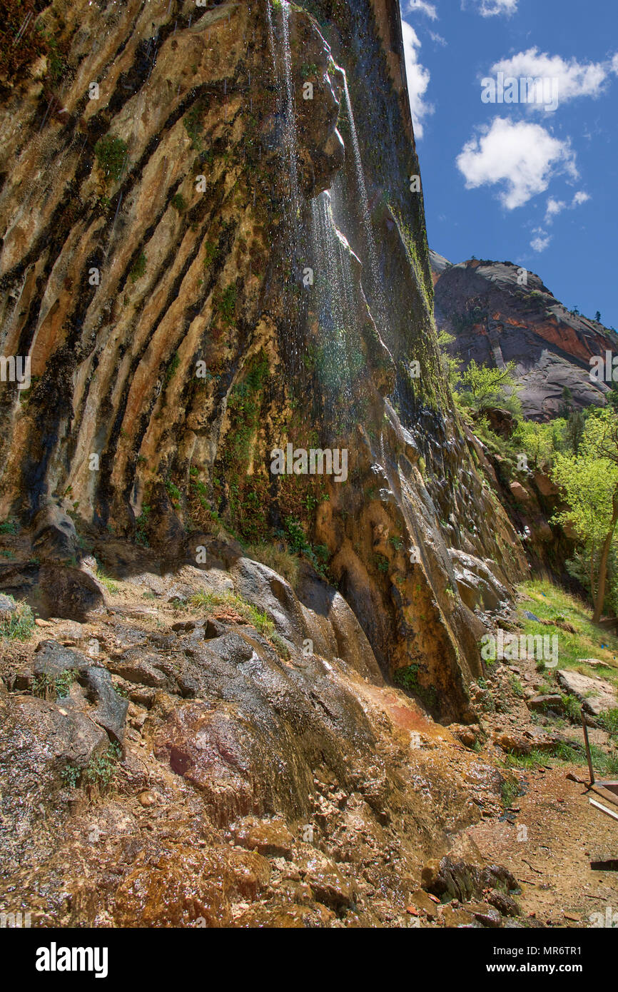 Weeping Rock in Zion National Parkdripping - Stock Image