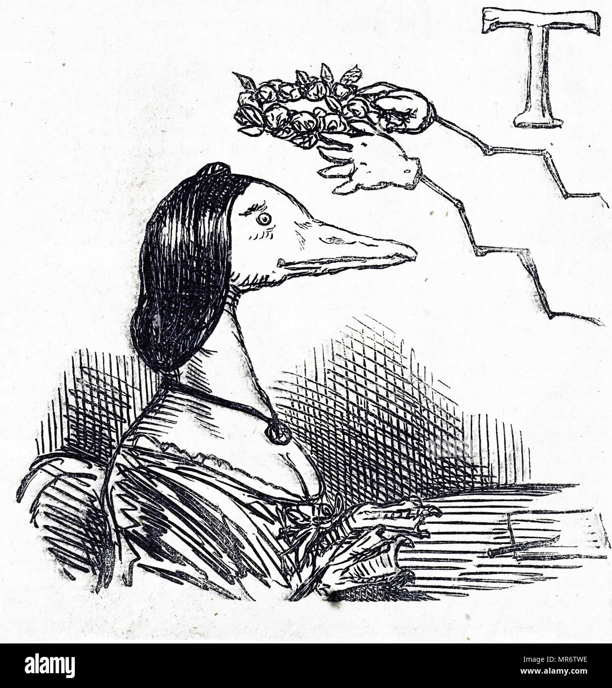 1870 cartoon showing a zoomorphic duck receiving a laurel garland as a fashion accessory. English 19th century; - Stock Image