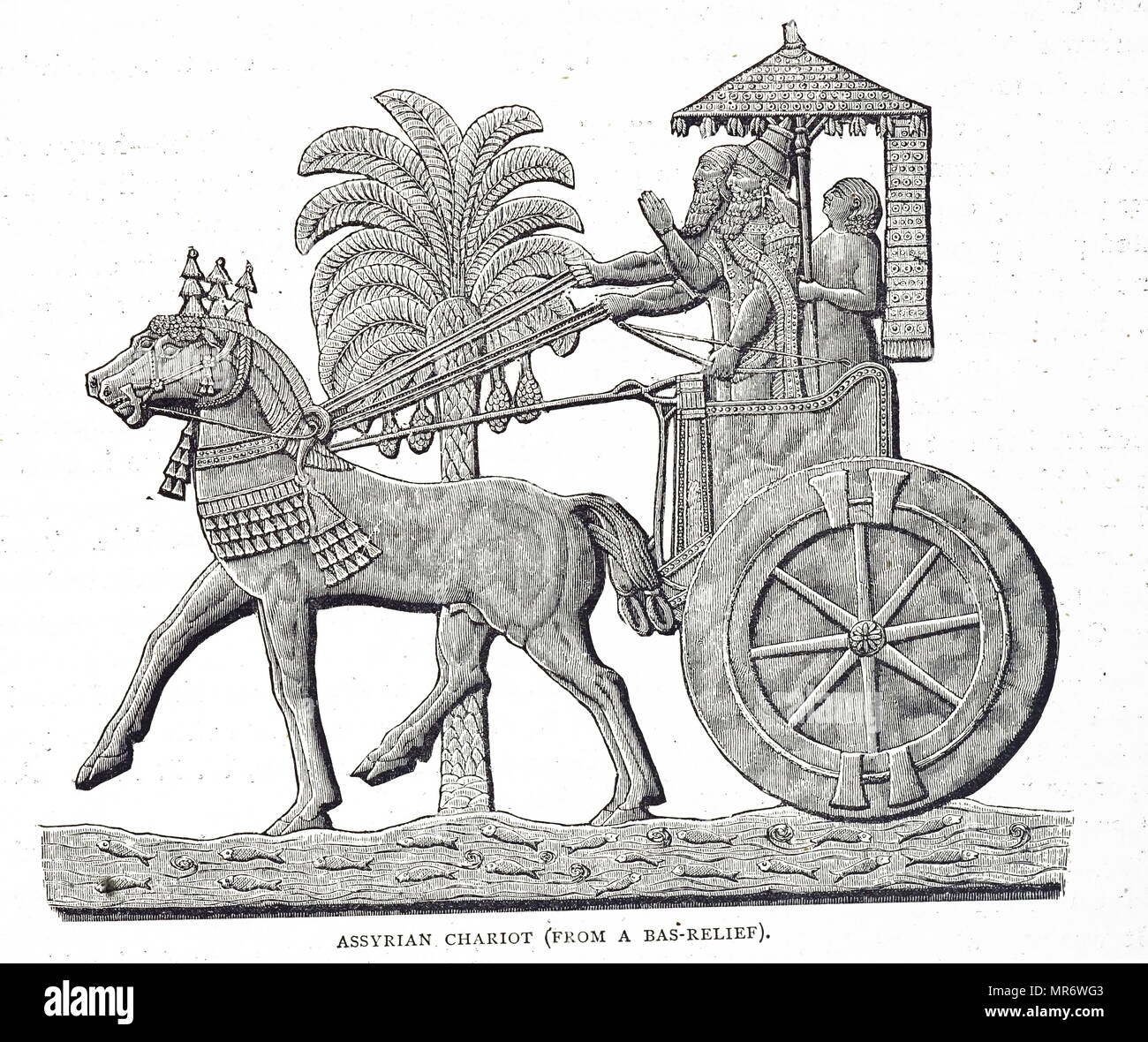 Engraving depicting an Assyrian Chariot. Dated 19th century - Stock Image