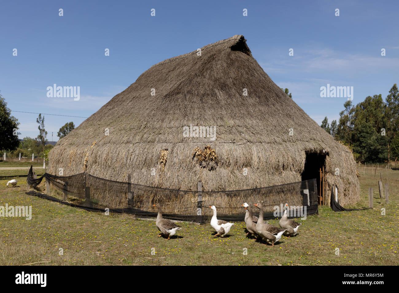 Cholchol, La Araucania, Chile: Traditional Mapuche communal thatch dwelling, called a ruka. Stock Photo