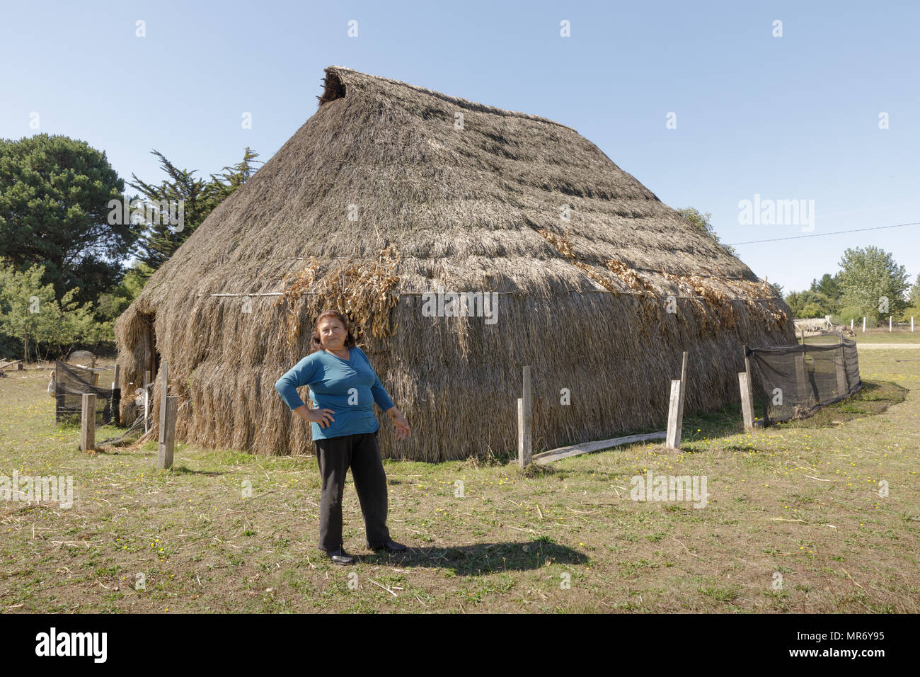 Cholchol, La Araucania, Chile: Mapuche woman stands in front of a reconstruc ted traditional communal thatch dwelling, called a ruka. - Stock Image