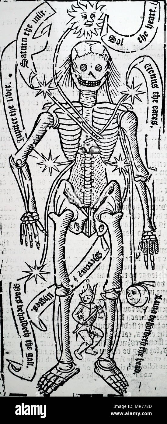 Woodblock engraving depicting the organs of the body and the planetary influences on them. Dated 16th century - Stock Image