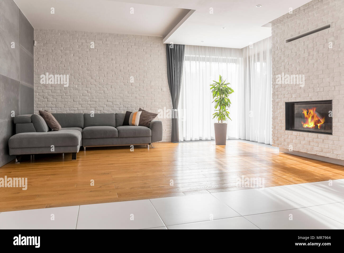 Fancy living room with sofa fireplace and plant
