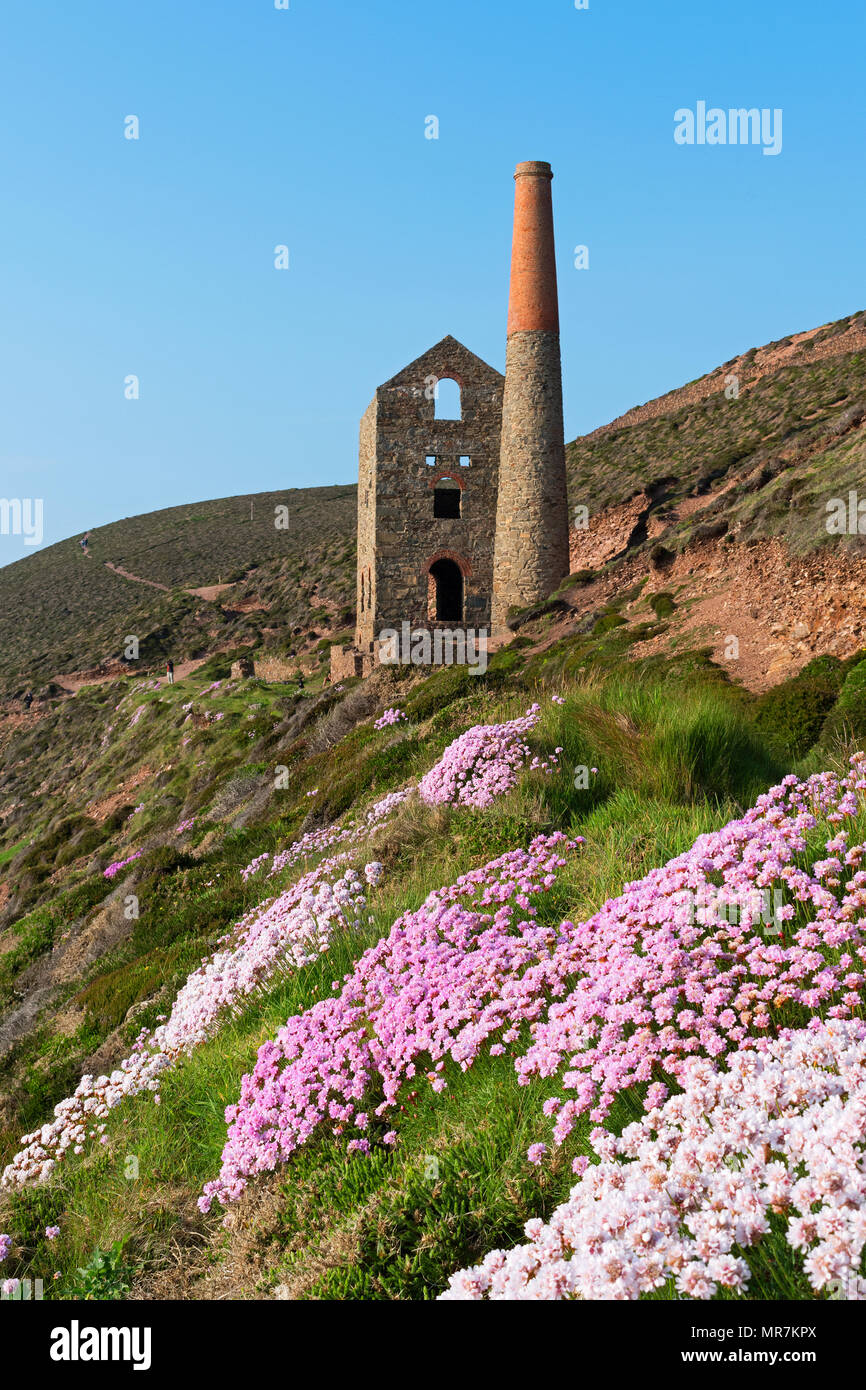 old tin mine near chapel porth in cornwall, england, britain, - Stock Image