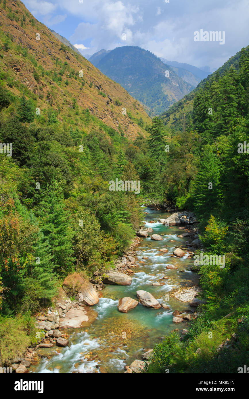 A stream flowing through the Tirthan Valley (Himachal Pradesh, India) - Stock Image