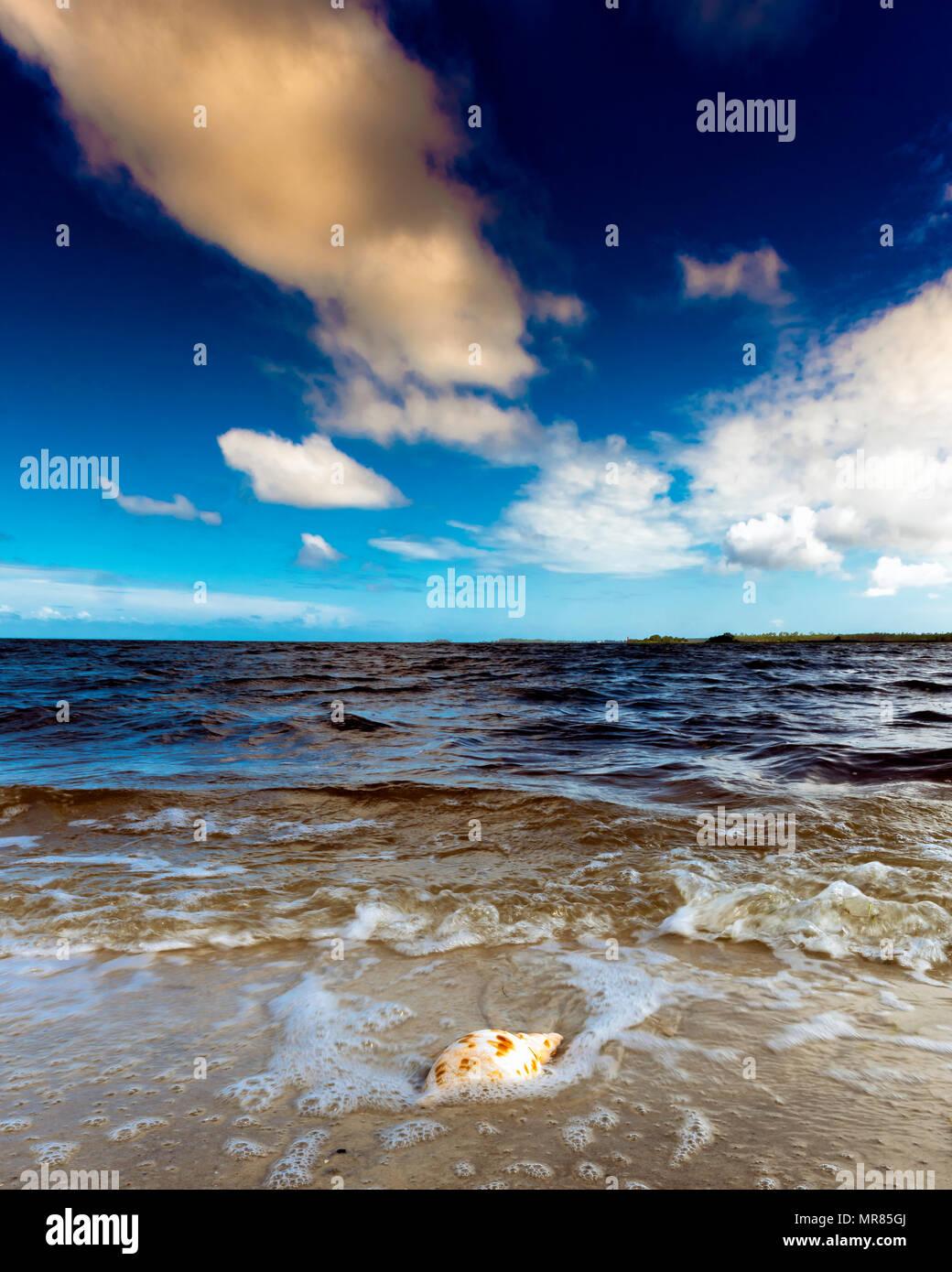Alone On the Beach Stock Photo