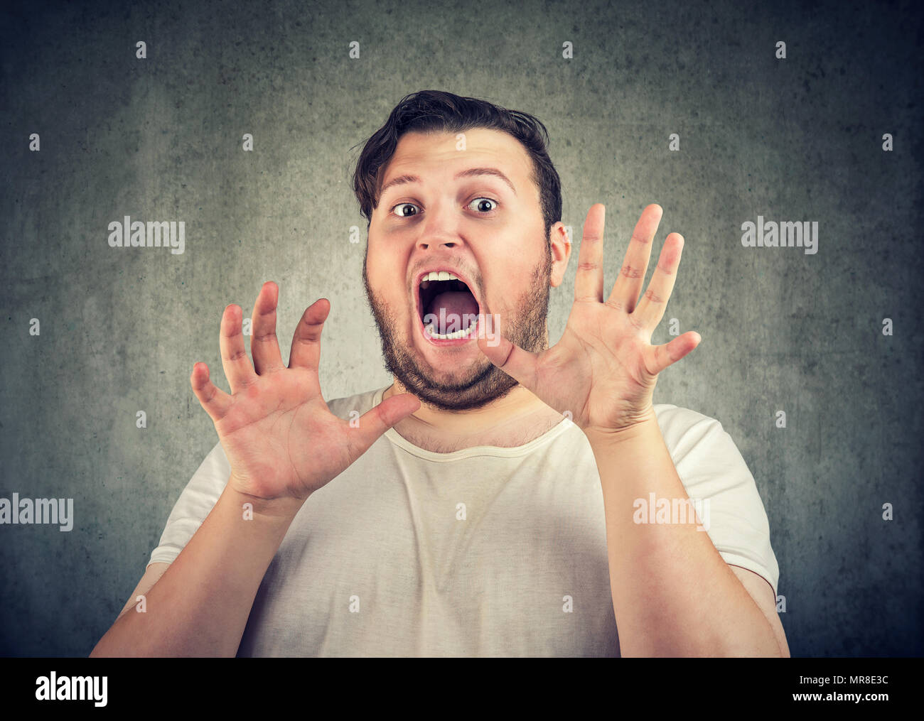 Chubby casual man holding hands in front of face and screaming with fear looking at camera on gray background. - Stock Image