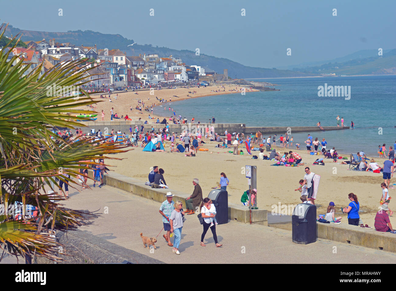 Lyme Regis, UK, 26 May 2018. UK Weather. Hundreds of people seen at Lyme Regis in Dorset on the beach and in the sea on a very hot and humid saturday may bank holiday weekend 2018. Robert Timoney/Alamy/Live/News - Stock Image