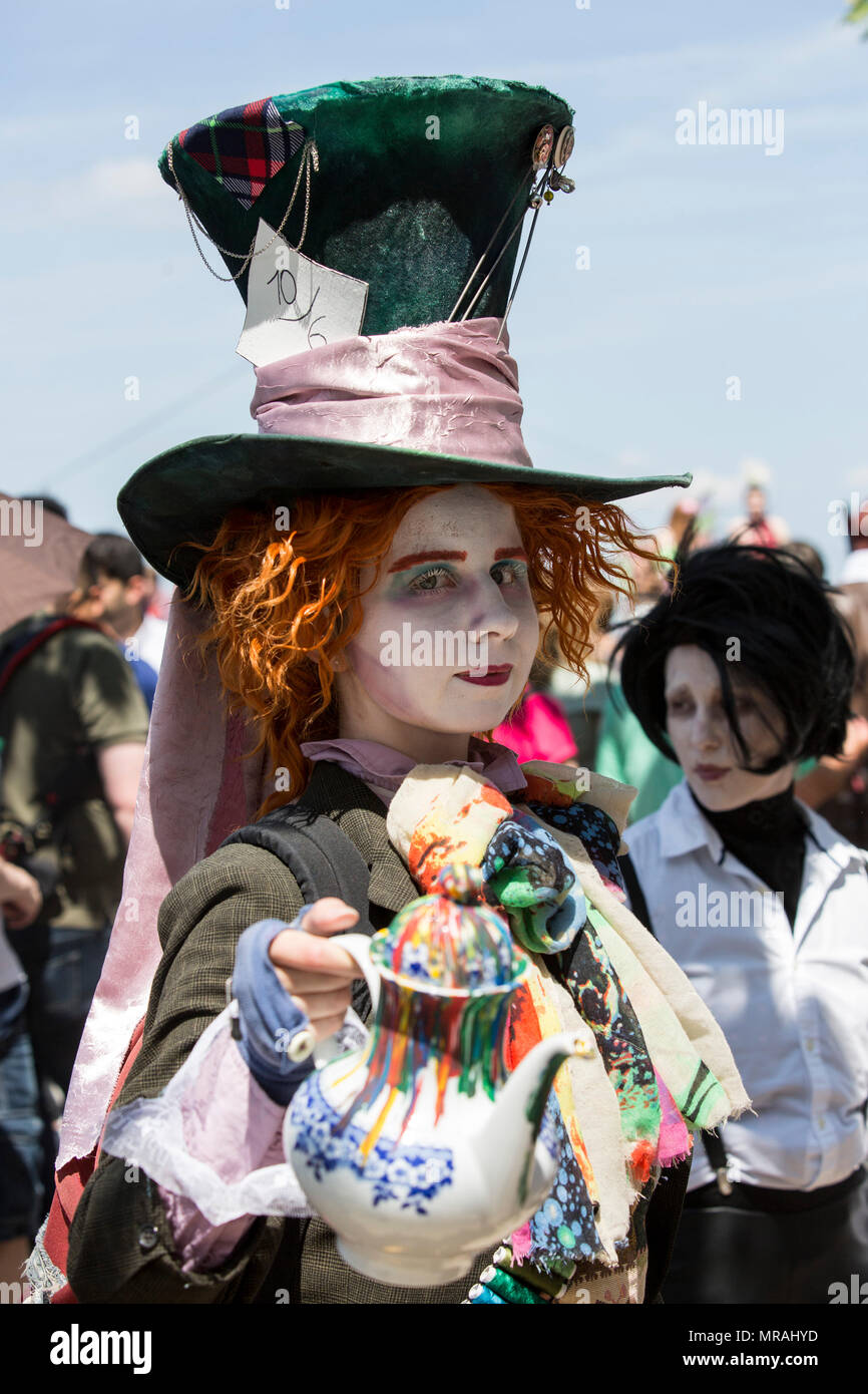 Mad Hatter Hat Wig Face Paint Party Alice Wonderland Stag Fancy Dress