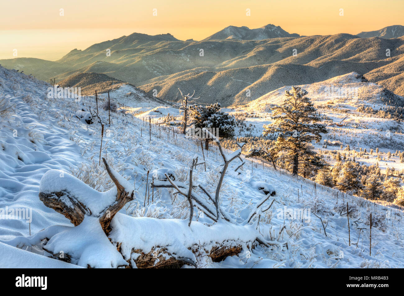 A view east toward Green Mountain at sunrise from snow-clad Sugarloaf Mountain in the Roosevelt Naitonal Forest near Boulder, CO. - Stock Image