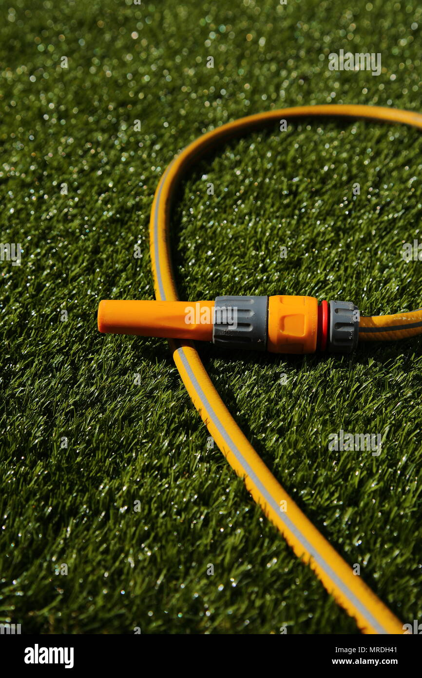 Hose pipe and sprayer attachment lying on grass in sunshine - Stock Image