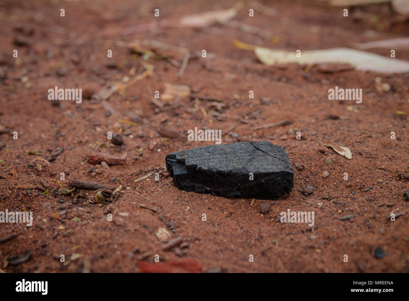 Piece of burnt wood coal on the ground. - Stock Image
