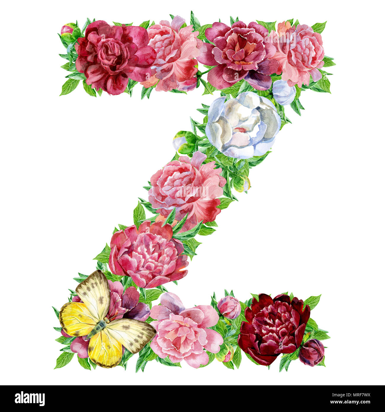 Letter Z Of Watercolor Flowers Isolated Hand Drawn On A White