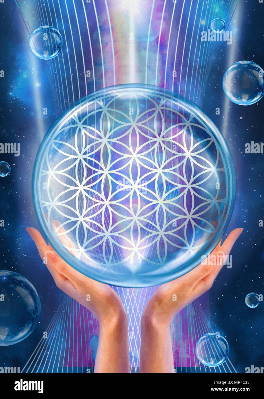 Flower Of Life Sacred Geometry Lotus Flower Pattern Of Creation