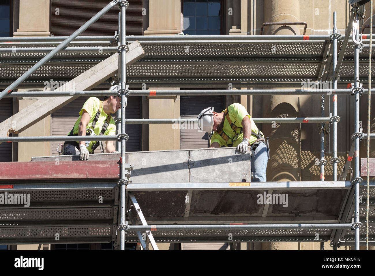 Scaffolders renovating old historic building, Florence, Tuscany, Italy, Europe, - Stock Image