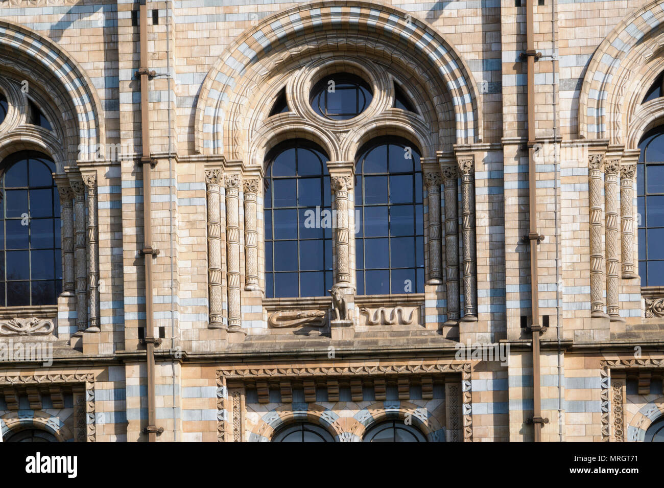 Natural History Museum London England - Stock Image