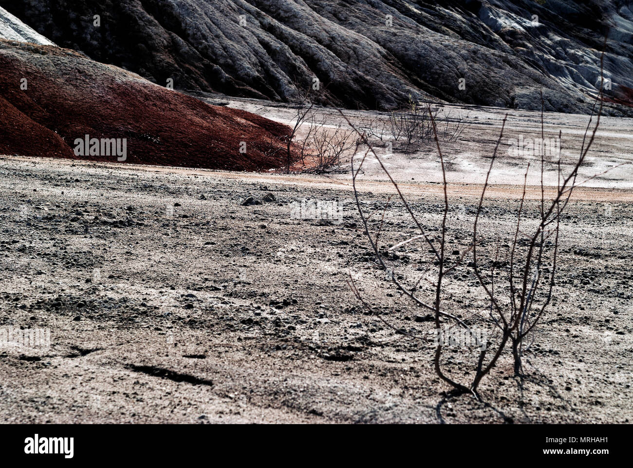 dead bushes in the gloomy weathered desert landscape of dumps of mine workings - Stock Image