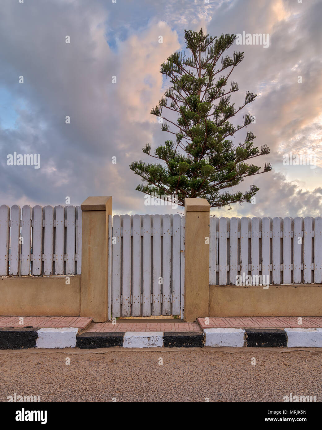 White weathered wooden garden gate and fence with background of single tree and cloudy sky at sunrise time at Montaza public park, Alexandria, Egypt - Stock Image