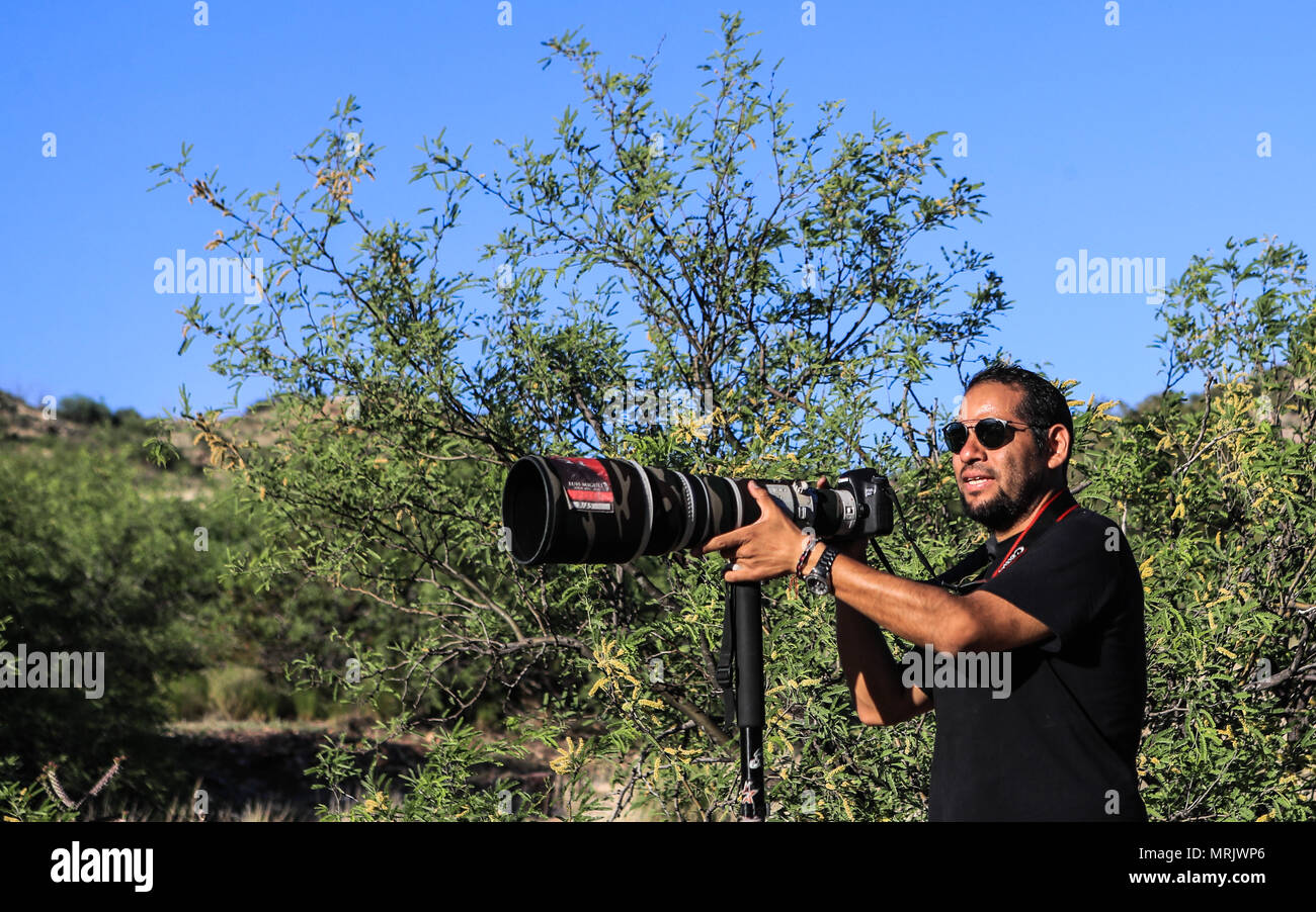 Photographer Ruben Dario Betancourt uses a 500mm Canon F4 lens and sunglasses, in the Cuenca los Ojos reserve. Natural reserve,. Sunset, Sun,sunset Stock Photo