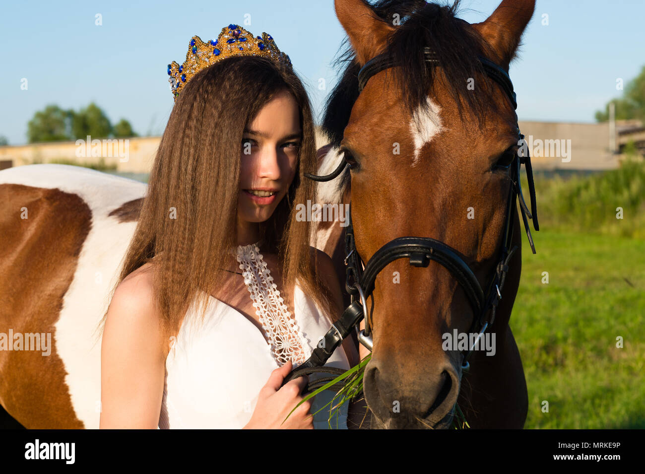 portrait beautiful young girl with horse - Stock Image