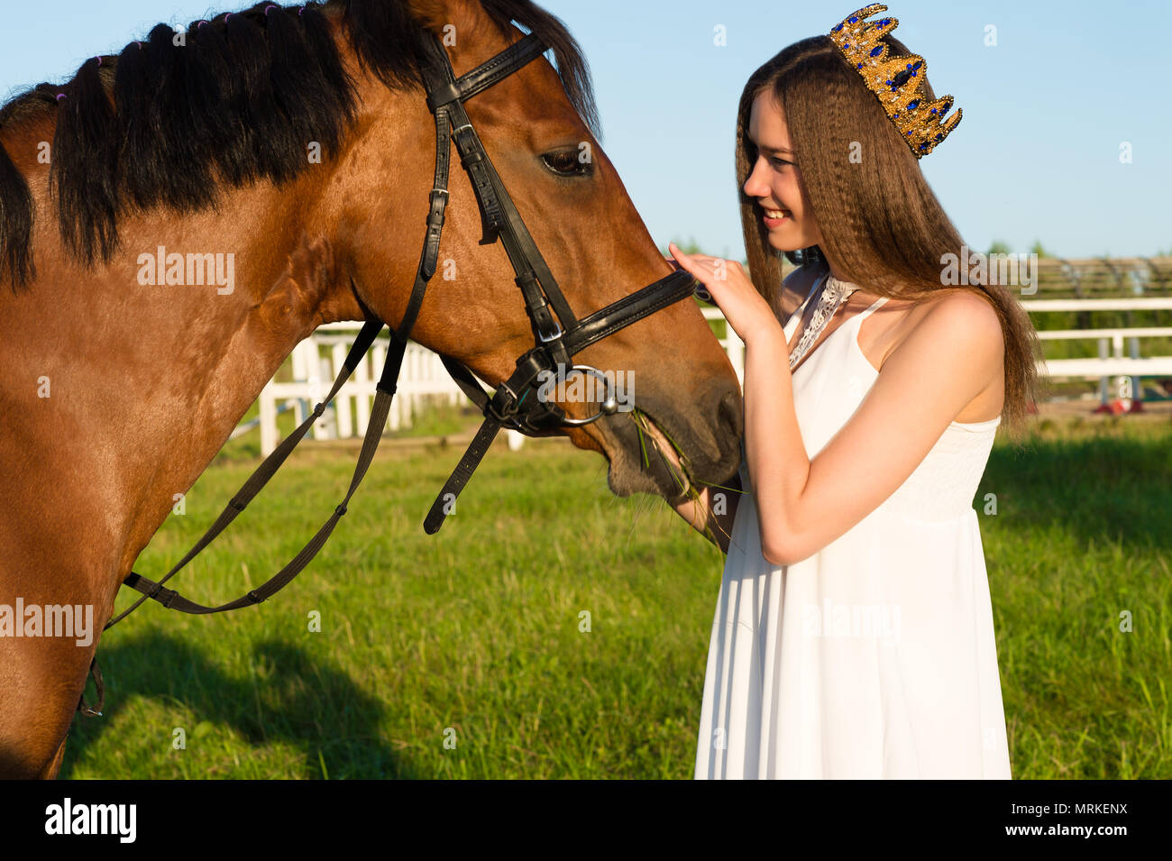 beautiful girl with a crown caress horse - Stock Image