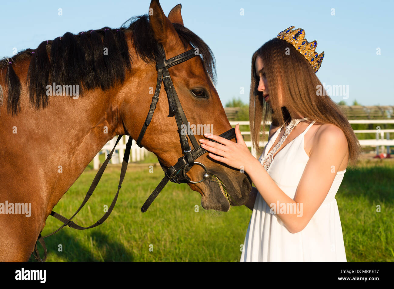 beautiful girl with a crown caress horse outdoors - Stock Image