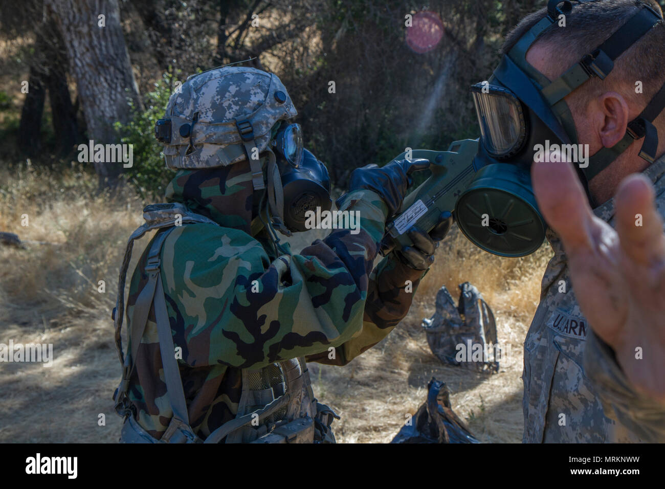 U.S. Army Staff Sgt. Amna Ali uses an Chemical Agent Monitor (CAM) to scan soldiers for agents, during the 91st Training Division's Warrior Exercise, on Fort Hunter Liggett, Calif. June 21, 2017. The CAM detects vapors of chemical agents by sensing molecular ions of specific mobilities (time of flight) and uses timing and microprocessor techniques to reject inferences. It can detect and discriminate between vapors of nerve and blister agents and display the relative concentration. (U.S. Army photo by Spc. Eric Unwin/released) - Stock Image