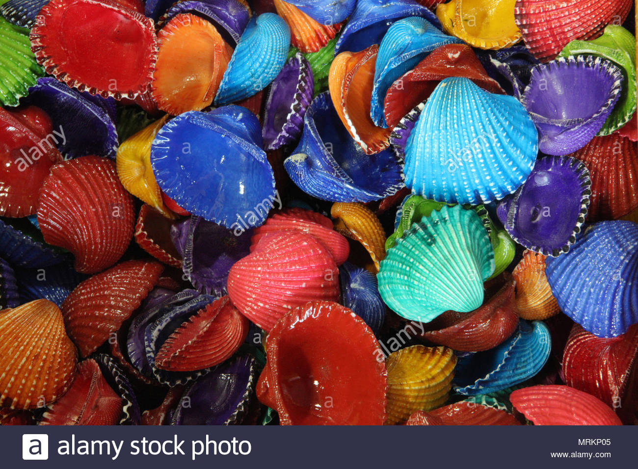Colorful painted seashells at a souvenir shop on Marco Island ...