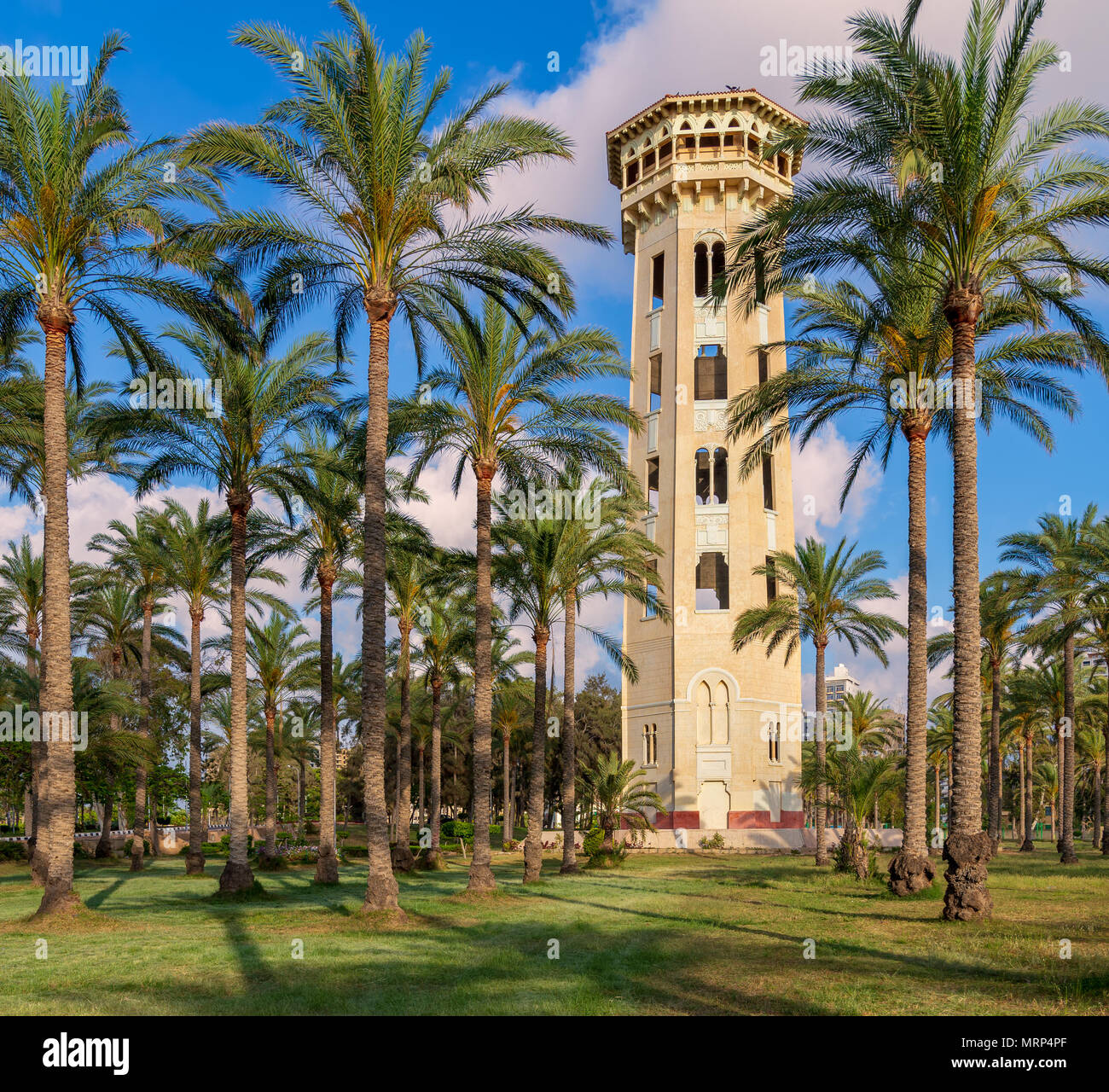 Old decorated antique elevated water tank framed by high palm trees before sunset with partly cloudy blue sky, Montaza public park, Alexandria, Egypt - Stock Image