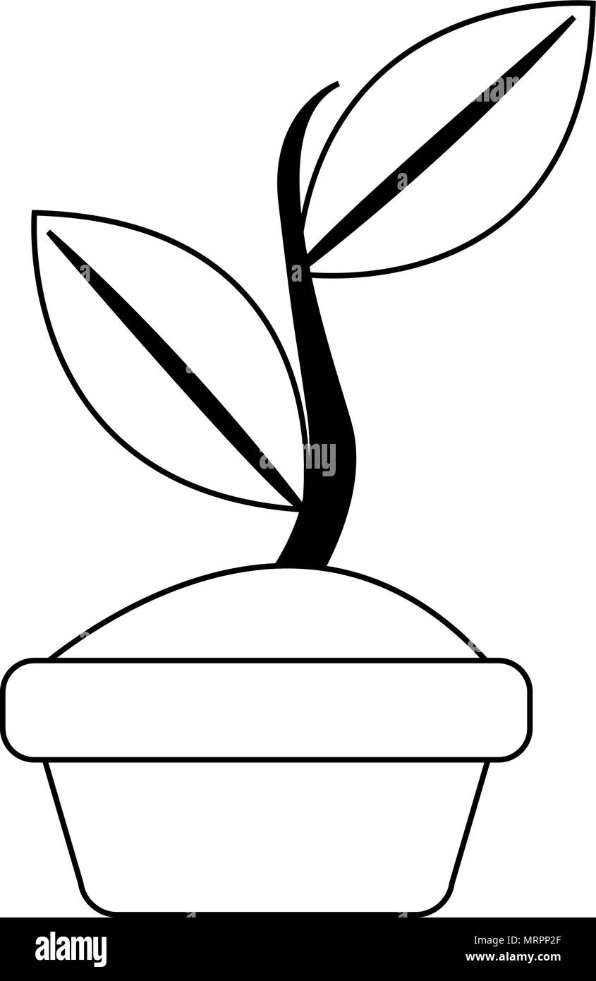 Illustration Cartoon Flower Pot Black And White Stock Photos