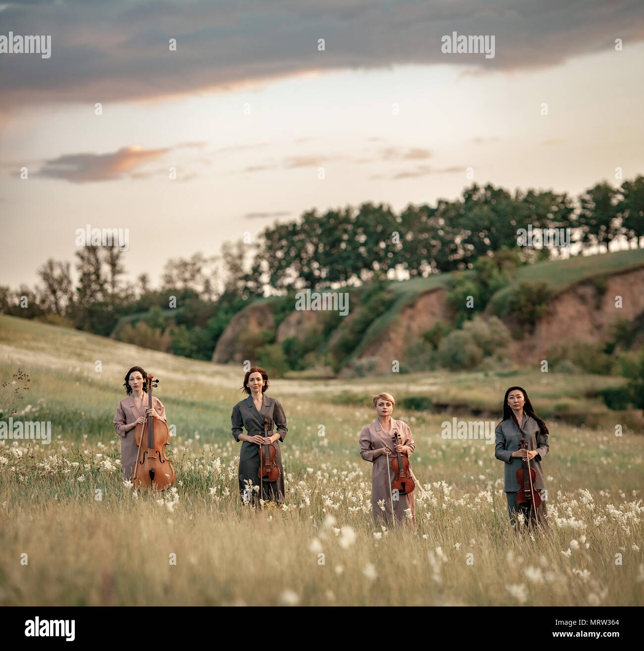 Female musical quartet with three violins and one cello stands on flowering meadow against backdrop of picturesque sky with clouds. - Stock Image