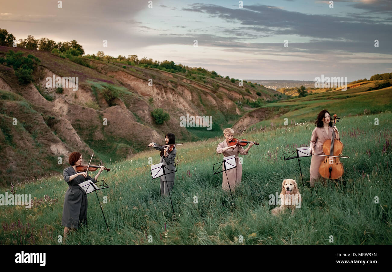 Female musical quartet with three violins and one cello plays on flowering meadow against backdrop of picturesque landscape next to sitting dog. - Stock Image