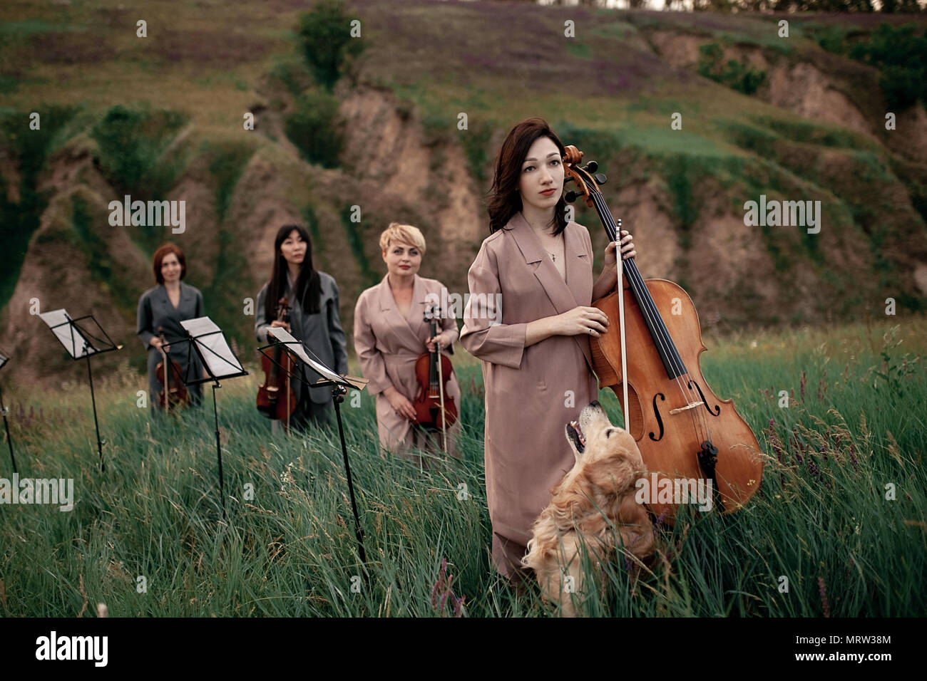 Female musical quartet with three violins and one cello prepares to play at flowering meadow against backdrop of picturesque landscape next to dog. - Stock Image